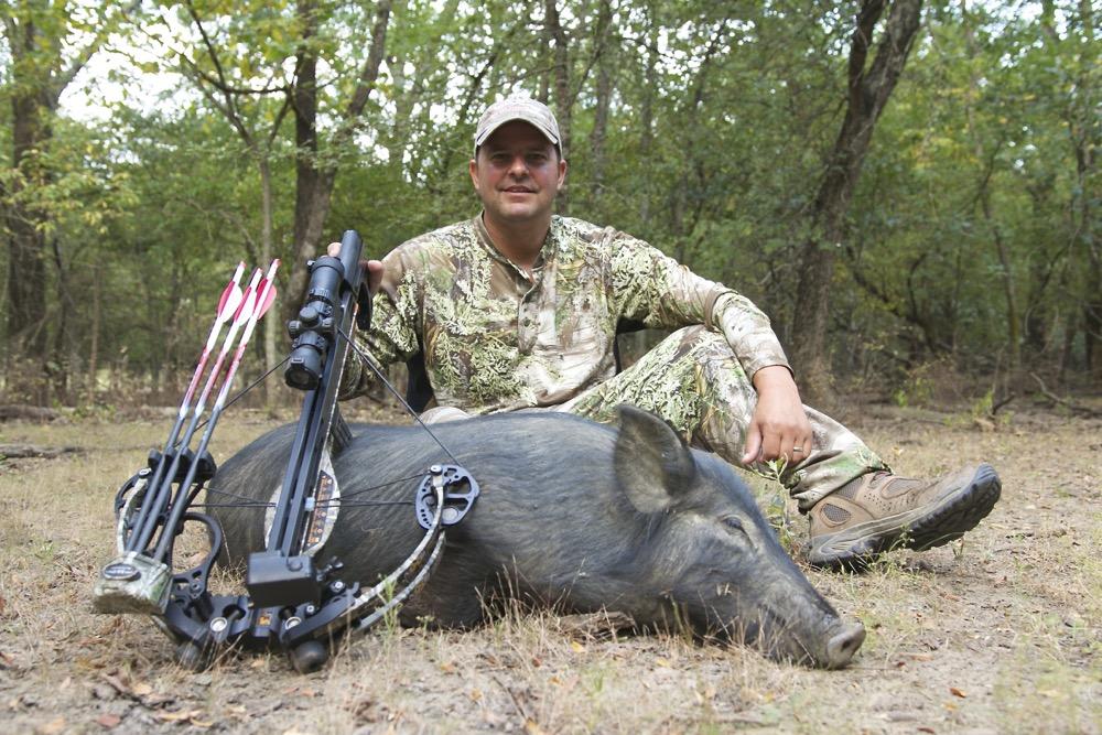 Shiloh Crossbow Boar